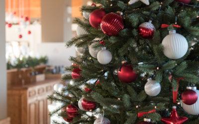 Un regalo sotto l'albero per tutti!
